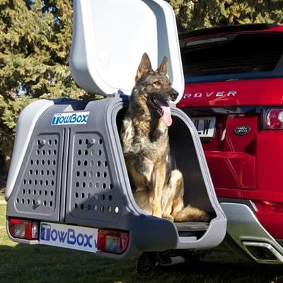 Box esterno auto per cani